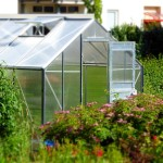 Příprava skleníku na jaro. Dezinfekce skleníku.
