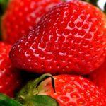 Jahody – královské ovoce a jeho varianty uskladnění