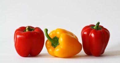 Papriky – recepty a jiné jejich způsoby zpracování