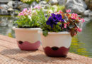 Naučte se relaxovat se samozavlažovacími květináči