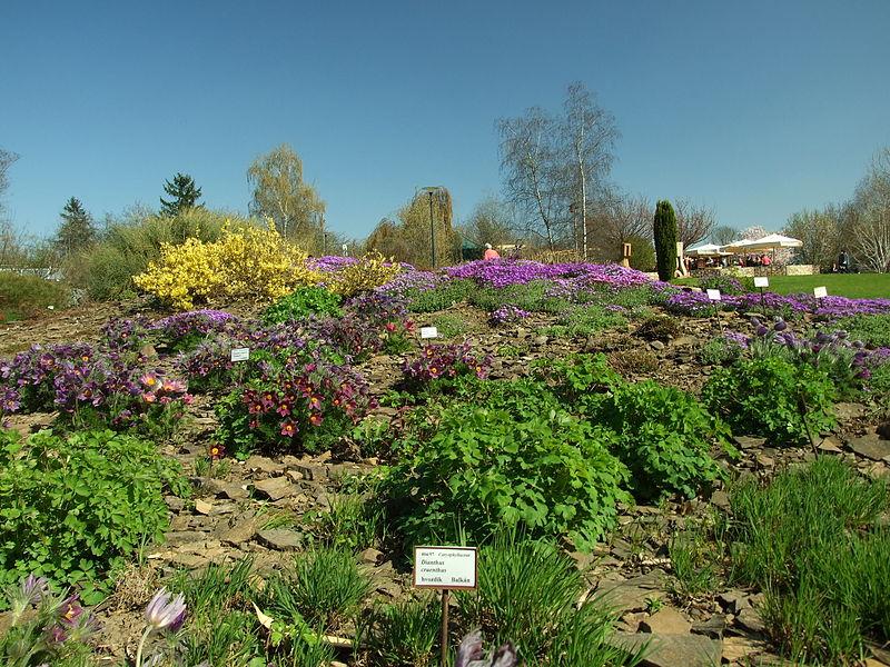 Botanická zahrada Praha - foto: Aktron