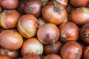 onions-1078149_640
