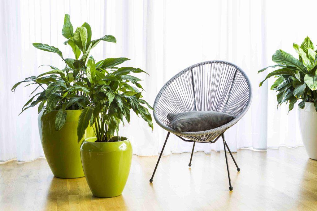 Designový samozavlažovací květináč Calimera